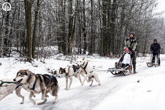 Kutyaszán - Hópehely Túra - 1.